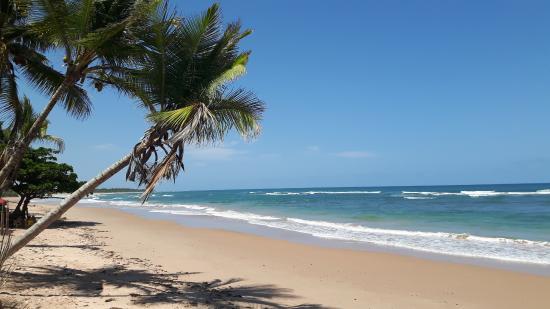 Praia De Algod 245 Es Pen 237 Nsula De Mara 250 Bahia Brasil