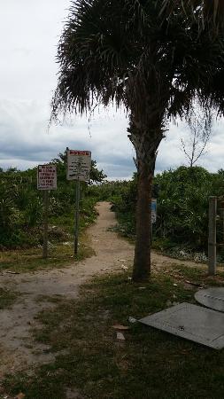 Jensen Beach, FL: Dollman Beach