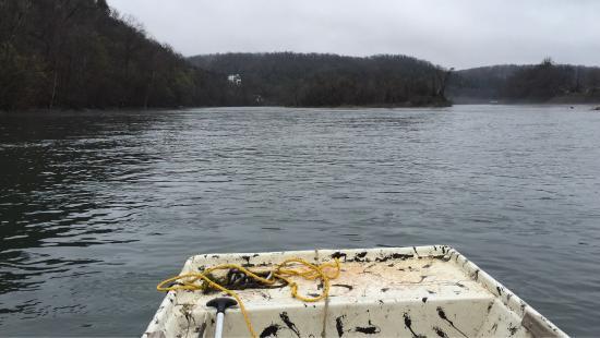 Flippin, AR: Trout fishing trip March 2016
