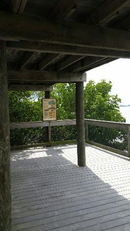Vitolo Family Preserve Park
