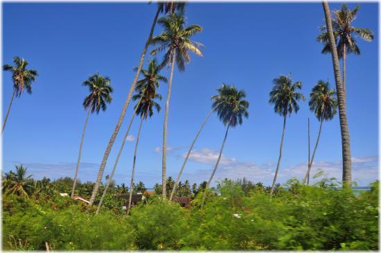 Moorea, Fransk Polynesia: Precioso paisaje.