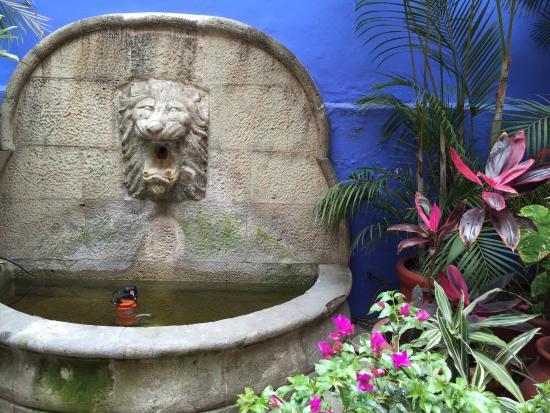 Casa de Siete Balcones: fountain in the lower patio