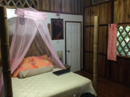 Coral Hill Bungalows Photo