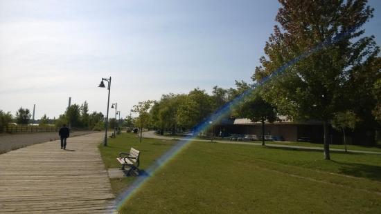 Woodbine Park