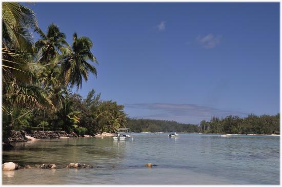Moorea, Fransk Polynesia: Wunderbar