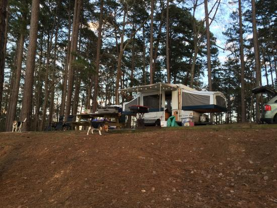 Appling, GA: Great campground!  Sites have super sunsets!