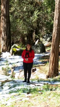 Idyllwild, Kaliforniya: 20160309_103034_large.jpg
