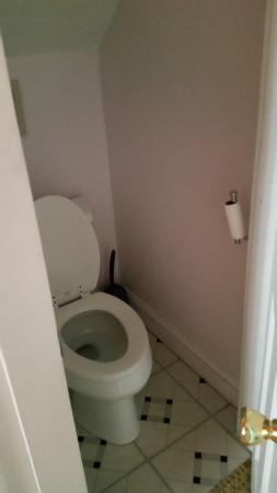 Inn Bliss Bed & Breakfast : tiny water closet