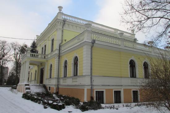 Aleksandrow Kujawski, โปแลนด์: Pałacyk Trojanowskich z 1864 roku - obecnie użytkowany przez zespół szkół ogrodniczych