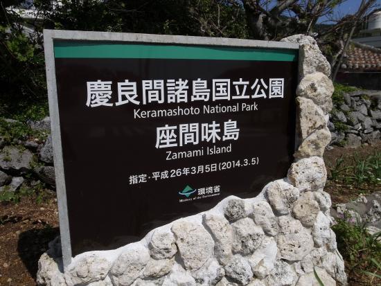 座間味島から阿嘉島はみつしまで渡ります - Picture of Zamami-jima Island, Zamami-son - TripAdvisor