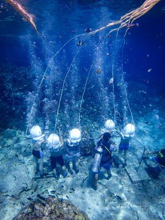 Serangan Dive Bali / Serangan Marine Service