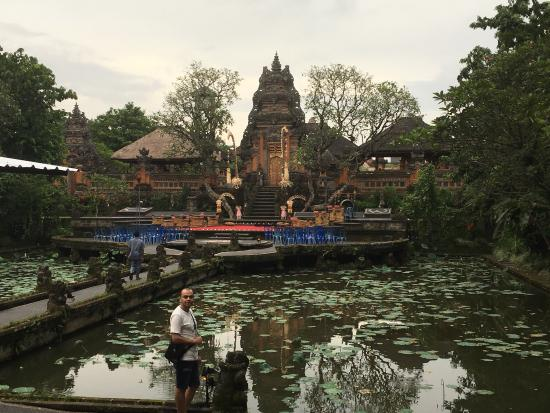 if you want to take a non forgettable photo for your visit in ubud rh tripadvisor com