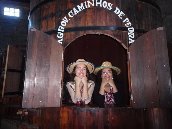 Salvati & Sirena Winery