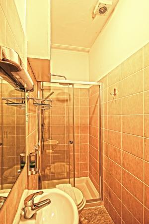 Primrose Guesthouse: en suite shower room