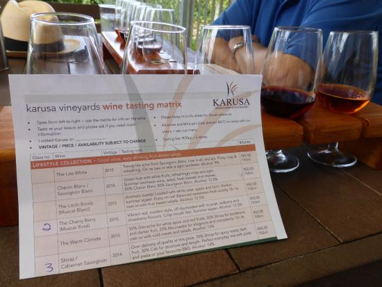 Oudtshoorn, South Africa: Mixed wine taster selection..