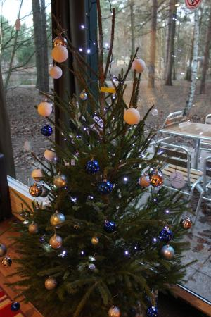 Center Parcs Elveden Forest: christmas tree & decorations waiting for us  when we arrived - Christmas Tree & Decorations Waiting For Us When We Arrived