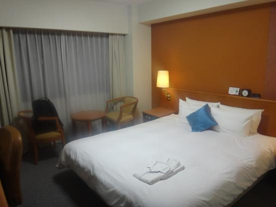 Richmond Hotel Kagoshima Kinseicho Bild