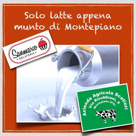 Gelateria Sanmarco: Il Latte Fresco Ogni Giorno dagli Appennini alla città