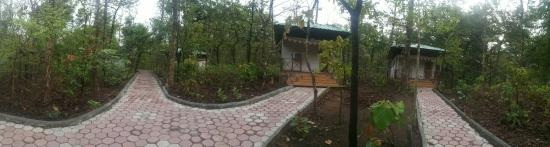 Delawadi, Indien: Jungle Camp