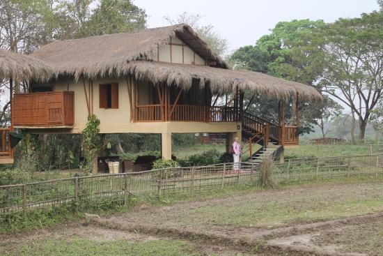 Diphlu River Lodge Photo
