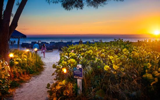 Photo of Guy Harvey Outpost, a TradeWinds Beach Resort Saint Pete Beach