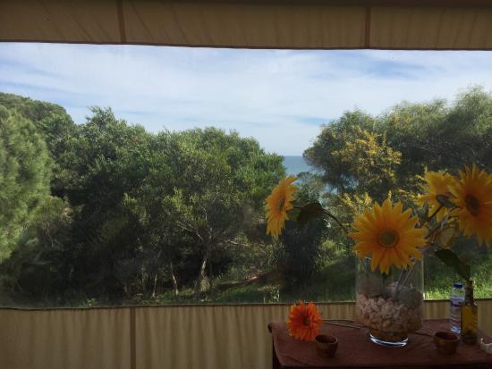 Spa Villas d'Agua: photo1.jpg