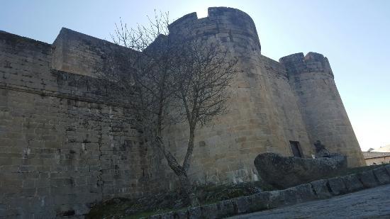 Puebla de Sanabria, Spain: Castillo de Los Condes de Benavente