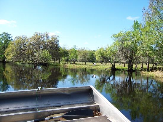 Sebring, FL: On an airboat down Arbuckle Creek to Lake Istokpoga