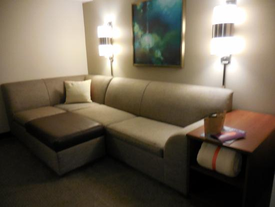 Hyatt Place Princeton: Sofa area and turns into sofa bed!