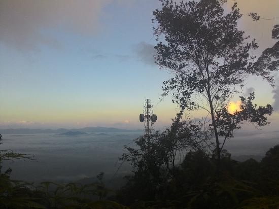 Dungun, Malezja: Rimba Bandar Bukit Bauk