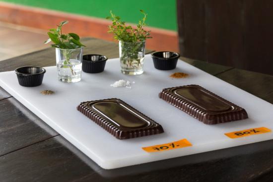 La Anita Rainforest Ranch: Schokoladeverkostung