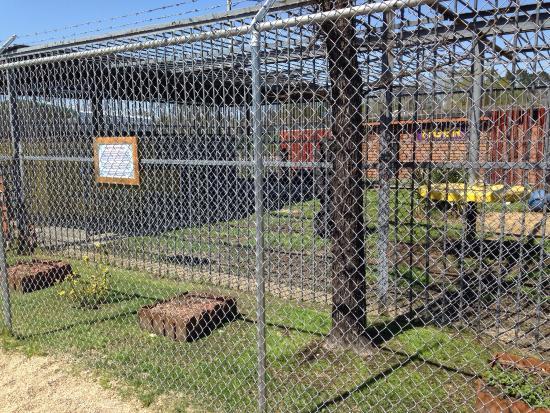 Grosse Tete, Λουιζιάνα: Tiger Truck Stop