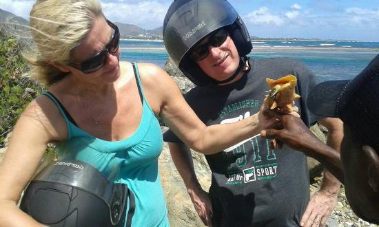 Oyster Pond, Άγιος Μαρτίνος: sea creature fun