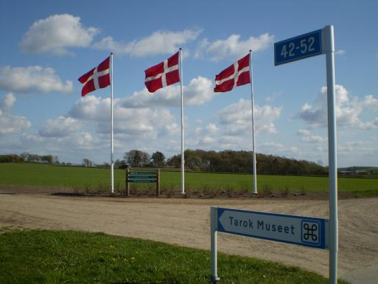 Skive, Dänemark: Flagallé ved indkørslen til Tarok Museet