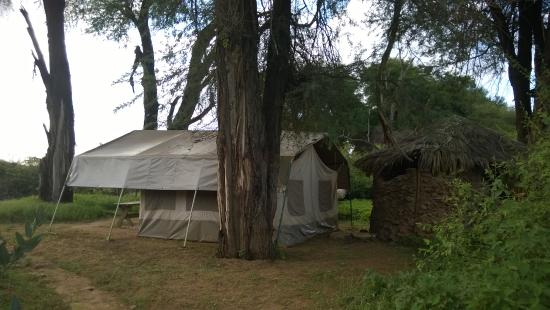 Lion King Bush Camp: Very quite tent at the end of the camp