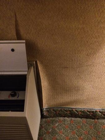 Cookstown, NJ: Room 112 .....needs some help !!! Heater was so noisy.  Couldn't hear the tv !!!