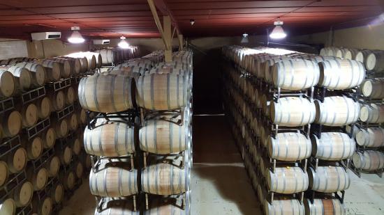 Kiepersol Estates Bed and Breakfast: Wine storage