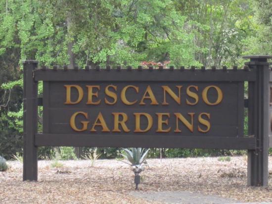 At Descanso Gardens 19 Picture Of Descanso Gardens La Canada Flintridge Tripadvisor