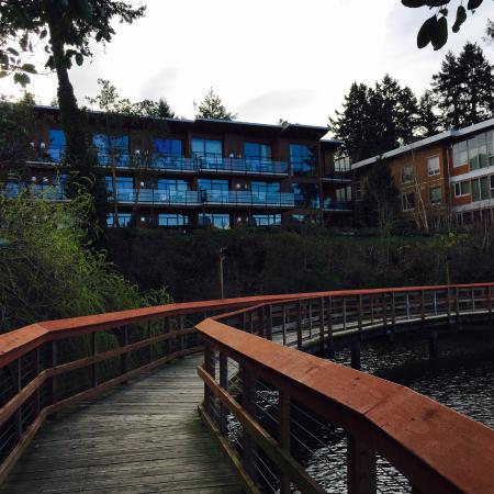 Brentwood Bay Resort & Spa: View of the resort rooms from the marina. Three levels of rooms.