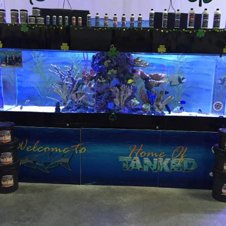 Big boy picture of acrylic tank manufacturing las for Fish store las vegas