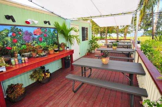 Waiahole Nursery And Garden Center Bistro: Bistro Deck Over Looking  Waiahole Bay! Beautiful