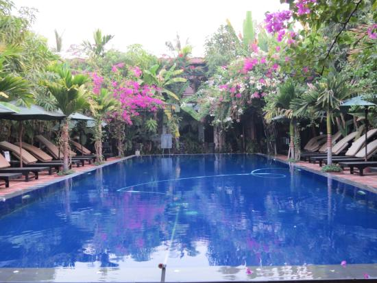 Pool - La Niche d'Angkor Boutique Hotel Photo