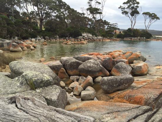 Tazmanya, Avustralya: photo1.jpg