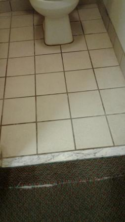 Red Roof Inn Cleveland-Medina: torn rug, dirty floor smells of urine