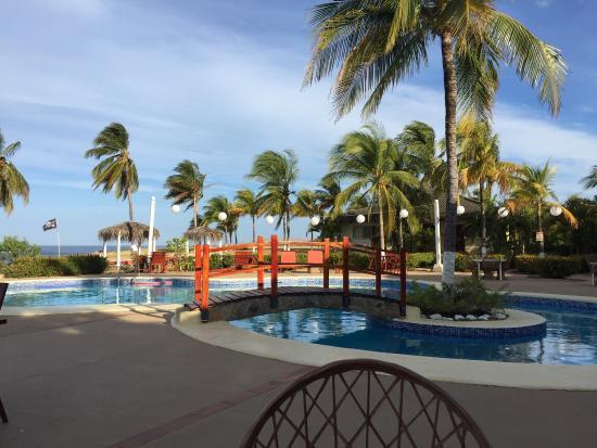 Hotel Iguanazul: photo5.jpg