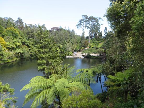 New Plymouth, Nueva Zelanda: Pukekura park, one of the many walks...