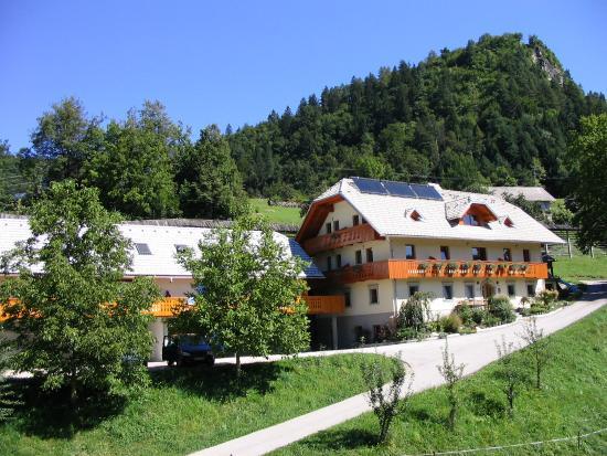 Mulej Tourist Farm: mulej farm house