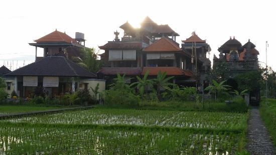 Bali Moon 사진