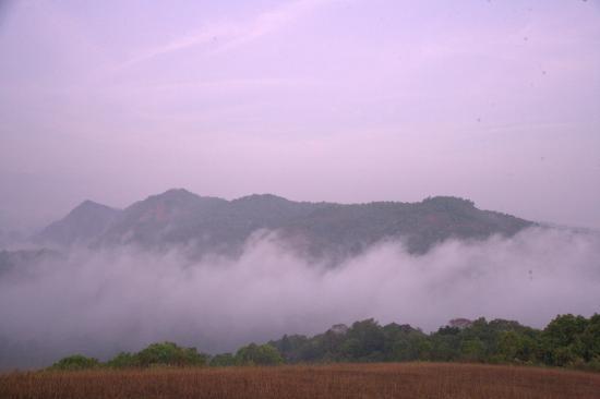 Landscape - Silent Valley Resort Photo
