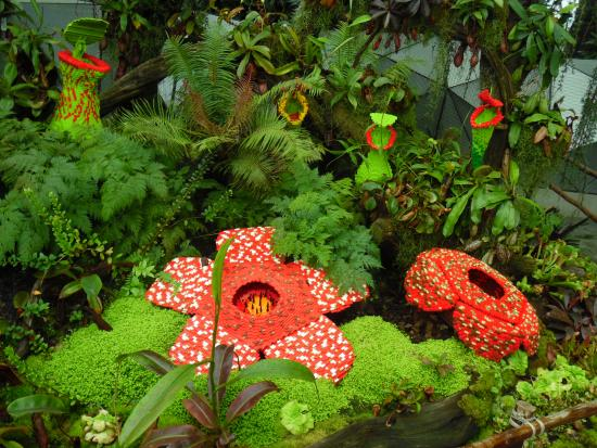 Gardens By The Bay: Lego Flowers Display   Flower Dome